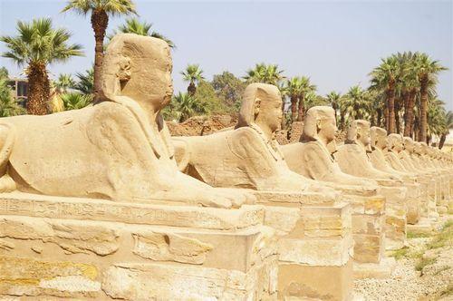 Sphinx Row