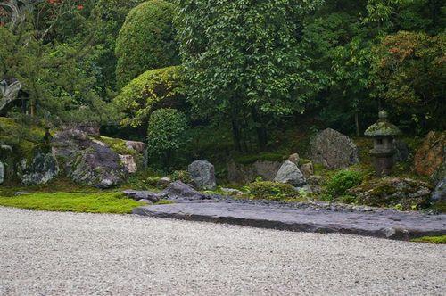 Rocks for Contemplation