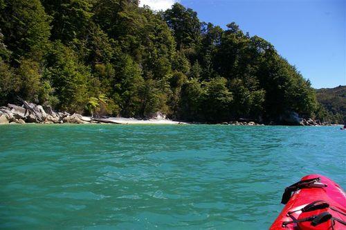 from the Kayak, Abel Tasman