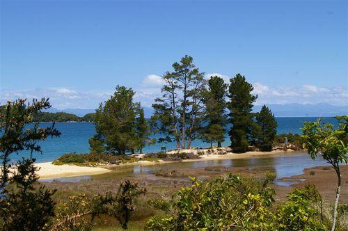 More Abel Tasman shore