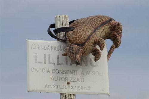 on the Lilliano property in Chianti